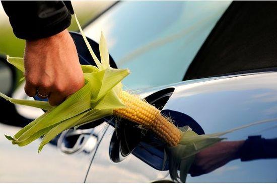バイデン大統領誕生で穀物価格上昇?その理由を解説