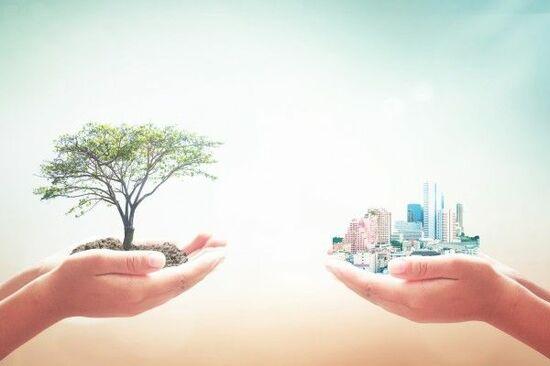 『ESG投資』で注目される日本企業
