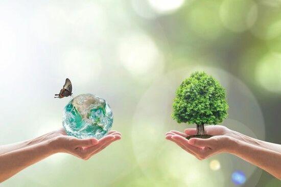 今、注目の『ESG』投資って何?