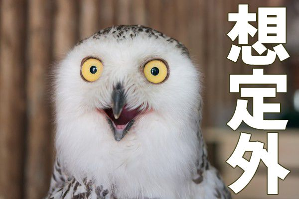 もうはまだなり?日米テック株が同時株高!