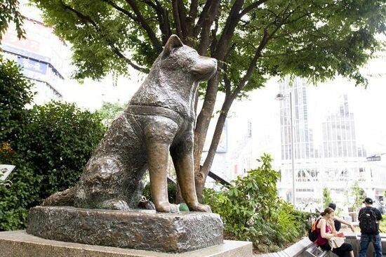 忠犬ハチ公の日【1934 (昭和9)年4月8 日】