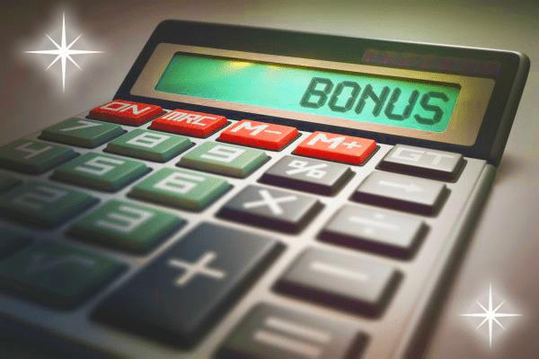 ボーナスからの月2万円。将来のために貯めますか?それとも使いますか?
