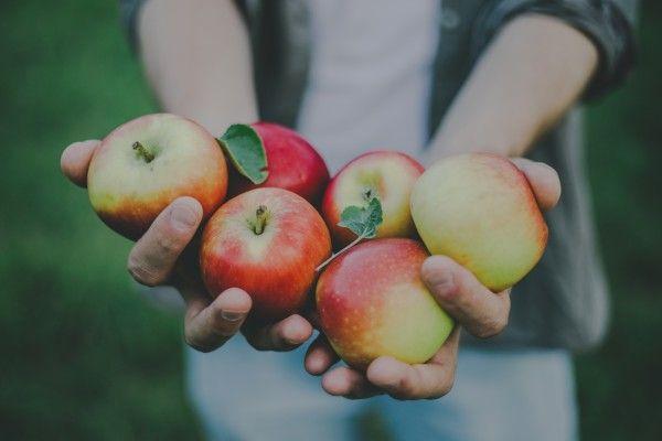 【アップル】アップル株を保有し続ける理由