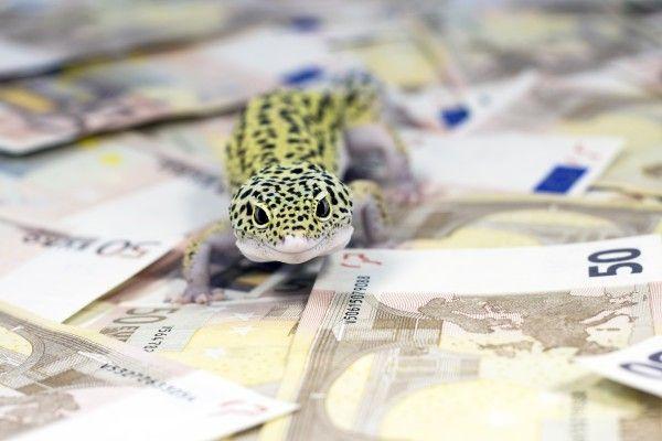 イタリア発の株価波乱?押し目はセクター選別の好機