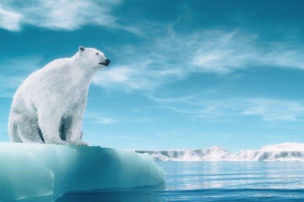 世界経済見通しは2年振り下方修正。IMFが警告する寒冷期の到来?
