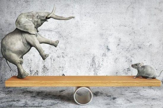利益を最大化する株式投資の節税対策