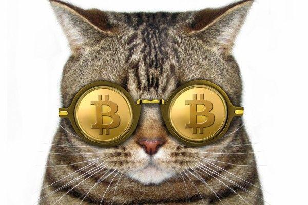 本当に安全?発行上限って?いまさら聞けないビットコインの超基本