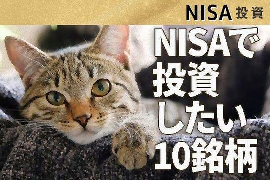 NISA枠で長期投資したい割安・高配当利回り株10選【投資初心者】