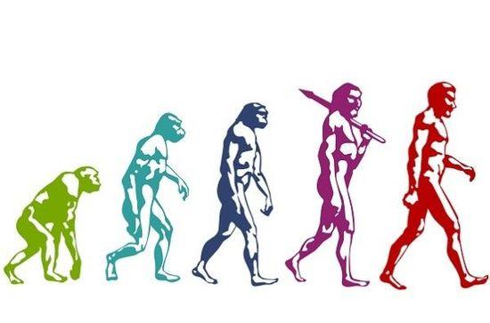 コロナ後の進化とは~山崎元おすすめ図書: Adaptive Markets 適応的市場仮説から考察する~